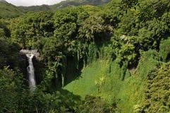 tropiska vattenfall Fotografering för Bildbyråer