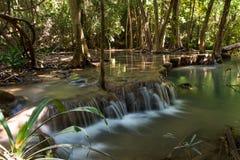 tropiska vattenfall Arkivfoton