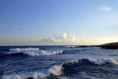 tropiska waves royaltyfri bild