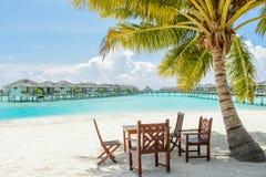 Tropiskt äta middag ställe under palmträdet på stranden royaltyfri bild