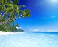 Tropiskt avslappnande begrepp för paradissommarsemester Arkivfoton