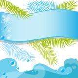 Tropiskt baner för sommar med palmblad Royaltyfria Foton