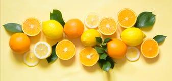 Tropiskt begrepp för sommar Uppsättning av citron, apelsin och gräsplansidor på guling baner royaltyfri fotografi