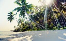 Tropiskt begrepp för natur för fritid för semester för strandloppferie Arkivfoton