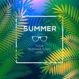 Tropiskt begrepp för sommar, paradis med palmblad Arkivfoton