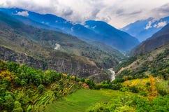 Tropiskt berglandskap med fält i Nepal royaltyfri fotografi