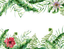 Tropiskt blom- kort för vattenfärg Hand målad sommarram med vektor illustrationer