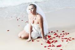 tropiskt bröllop royaltyfri bild