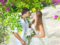 tropiskt bröllop royaltyfria bilder