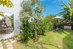 Tropiskt gräsplanträdgårdområde på den traditionella villan royaltyfria foton