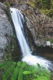 Tropiskt granskningsvatten för vattenfall royaltyfri fotografi