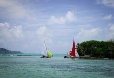 Tropiskt hav i Mauritius Island Arkivbilder