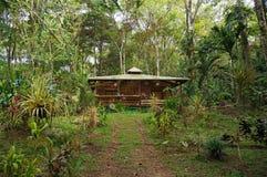 Tropiskt hus i djungeln av Costa Rica Arkivbild