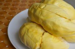 tropiskt isolerat foto för durian frukt Arkivfoton