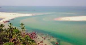 Tropiskt kustsurrskott arkivfilmer