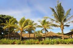 Tropiskt landskap för härlig landskapsommar av palmträd och strandsemesterorten under en blå himmel i den Bali ön av Indonesien i Royaltyfri Foto