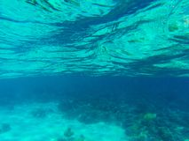 Tropiskt landskap för havsvatten med korallreven och krusig yttersida Grunt havsvatten med ytbehandlar textur royaltyfria bilder