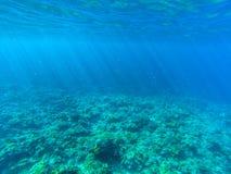 Tropiskt landskap för havsvatten med korallreven och små fiskar Grunt havsvatten med solstrålar arkivbild