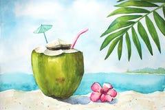 Tropiskt landskap för vattenfärg med kokosnöten arkivbild