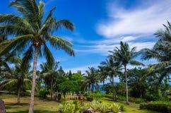 Tropiskt landskap i Taiwan arkivfoto