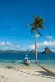 Tropiskt landskap med den krökta palmträdet Royaltyfri Bild