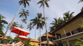 Tropiskt landskap med palmträd, hotell Royaltyfria Foton