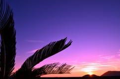 Tropiskt landskap på solnedgången på Italien Royaltyfri Bild