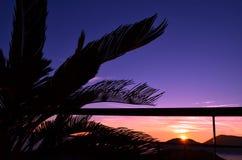 Tropiskt landskap på solnedgången på Italien, Liguria Royaltyfri Fotografi