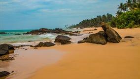 tropiskt orört för strand Tropisk semester i Sri Lanka arkivbilder