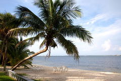 tropiskt paradis Royaltyfri Foto