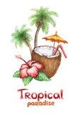 tropiskt paradis Arkivfoto