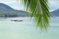 Tropiskt paradis - closeup av palmblad- och turkoshavsvatten arkivfoto