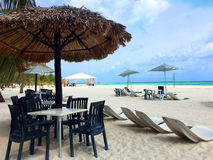 Tropiskt paradis Cozumel Royaltyfria Bilder