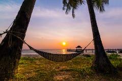 Tropiskt paradis - hängmatta mellan palmträd Arkivfoton