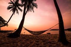 Tropiskt paradis: solnedgång på sjösidan arkivbilder
