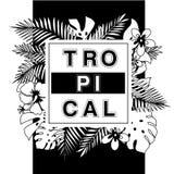 tropiskt paradis T-tröja- eller affischdesigntrycket med gömma i handflatan leav Fotografering för Bildbyråer