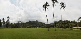 Tropiskt parkera i Hawaii Arkivfoto