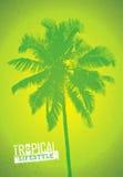 Tropiskt parti för livsstilsommarstrand Idérikt vektoraffischbegrepp Palmträd på bekymrad bakgrundsillustration Fotografering för Bildbyråer