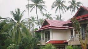 Tropiskt regn tappar att falla på palmbladen i ön Koh Samui, Thailand Sikt på ett härligt hus 1920x1080 arkivfilmer