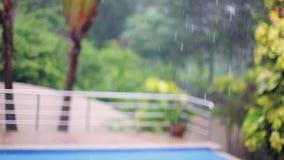 Tropiskt regn tappar att falla på palmbladen på suddig bakgrund för simbassäng i Koh Samui, Thailand 1920x1080 stock video