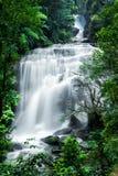Tropiskt regnskoglandskap med den Sirithan vattenfallet thailand arkivbild