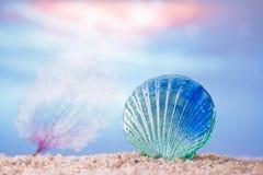 Tropiskt snäckskalhavsskal på sand med havet fotografering för bildbyråer