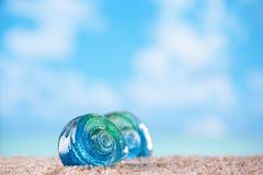 Tropiskt snäckskalhavsskal på sand med havet arkivbild