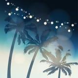 Tropiskt sommarparti eller Festa Junina hälsningkort, inbjudan Kontur av palmträd igen aftonhimlen vektor illustrationer