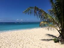 Tropiskt strand- och blåtthav Arkivbild