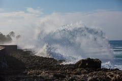 Tropiskt strandavbrott, havvåg som krossar stenkustlinjen, vatten royaltyfria foton