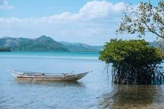 tropiskt strandfartyg Royaltyfri Fotografi