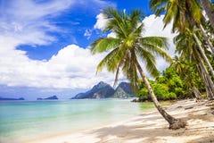 tropiskt strandlandskap Arkivbild