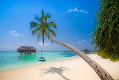 tropiskt strandlandskap Royaltyfria Foton