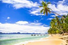 Tropiskt strandlandskap, Palawan (Filippinerna) Arkivbild